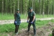 На Буковині висаджують новий ліс (Фото)