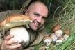 Чернівчанам на замітку: які гриби не варто їсти і чому