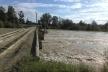 Загроза повені: буковинців попередили про підйом рівня води у річках