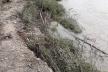 Дамбу у Вижницькому районі може прорвати (фото)