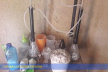 У Франківську плантації коноплі, а на Буковині лабораторію з виготовлення амфетаміну - правоохоронці борються з наркобізнесом (фото, відео)