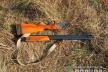 У Чернівецькій області чоловік застрілив косулю