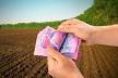 До місцевих бюджетів Буковини надійшли понад 298 млн грн за землю