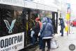 Щоденний екстрім: чи доступні тролейбуси у Чернівцях для людей з інвалідністю?