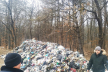 На Буковині посеред лісництва опинилося львівське сміття