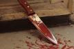 Поліція Буковини розслідує смерть подружжя