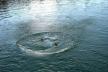 У річці на Буковині виявили тіло 18-річної дівчини
