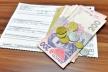 Призначення субсидій: які документи необхідні та куди звертатися буковинцям