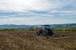 Від старту ринку землі на Буковині за місяць продали 27 гектарів