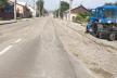 На вулицях Чернівців впало понад 50 дерев, утворилося чотири провалля