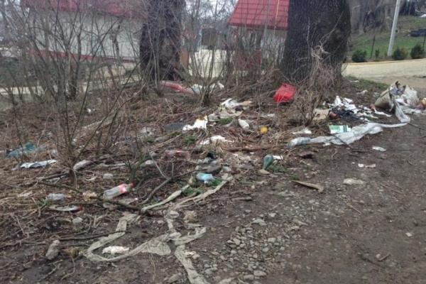 Посеред Чернівців росте смітник (Фото)
