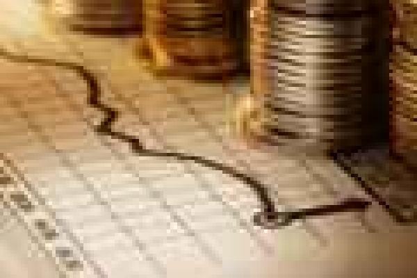 На Буковині триває приватизація державного і комунального майна
