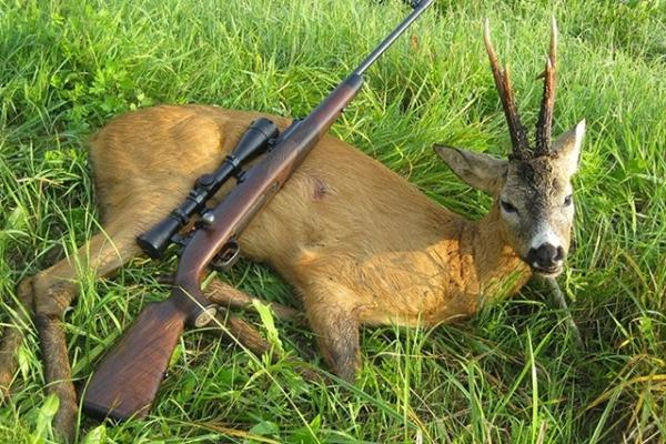 На Буковині затримали двох браконьєрів, які незаконно вполювали косуль