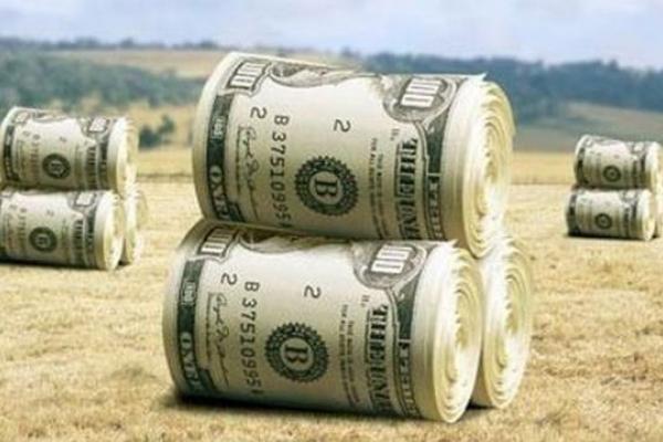 Понад 200 мільйонів гривень сплатили в казну буковинські землекористувачі