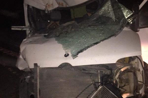 Водія, який п'яним спричинив смертельну аварію на Буковині, відпустили під домашній арешт