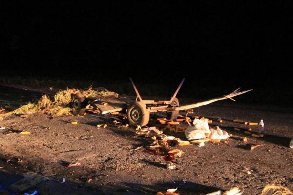 На Буковині зіткнулися «євробляха» і підвода: загинув кінь (Фото)