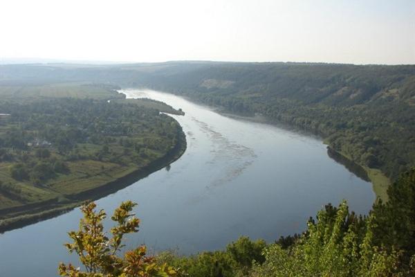 Які підприємства забруднюють екосистему Буковини?