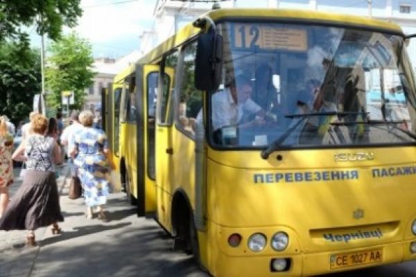 Вісім нелегальних перевізників виявили на Буковині