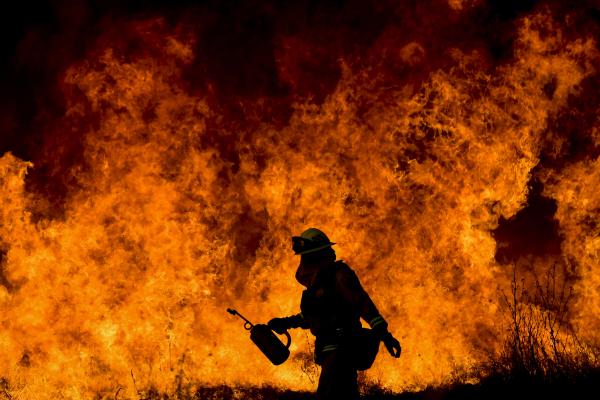 З початку 2018 року на території Чернівців сталося 276 пожеж