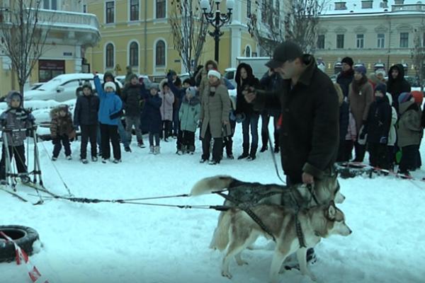 На площі Філармонії у Чернівцях хаскі катали дітей на санчатах  (Фото)