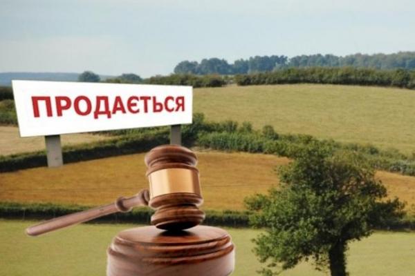 У Чернівцях проведуть земельні торги у формі аукціону