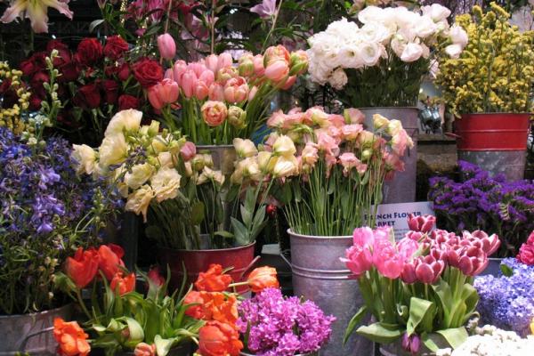 Квітковий ярмарок працюватиме у Чернівцях 6-8 березня