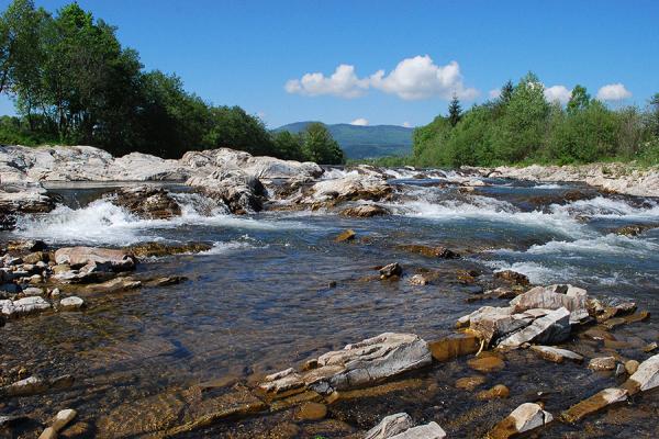 Найчистішими українськими річками визнають карпатські