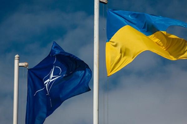 Дні НАТО на Буковині: програма заходів