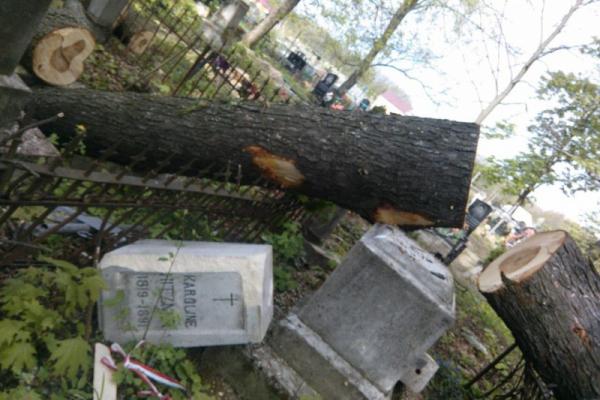На Буковині зруйнували пам'ятники (Фото)