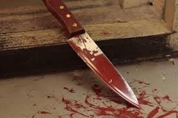 Буковинець поранив ножем невістку та самого себе