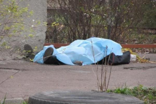 Труп матері у підвалі: у поліції Заставни розповіли подробиці жахливого інциденту (відео)