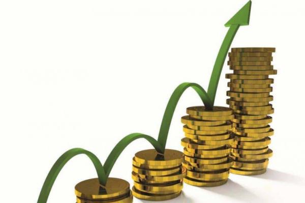 Доходи місцевих бюджетів Буковини зросли на 15,1 %