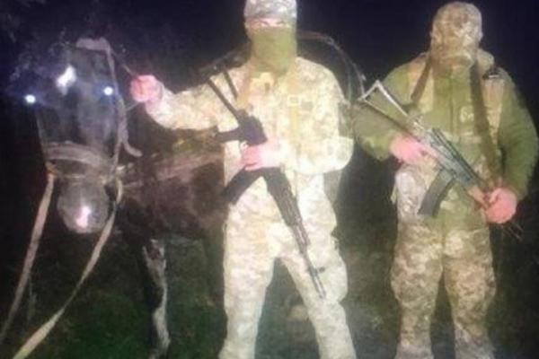 Чергова стрілянина на буковинському кордоні: прикордонники затримали коня