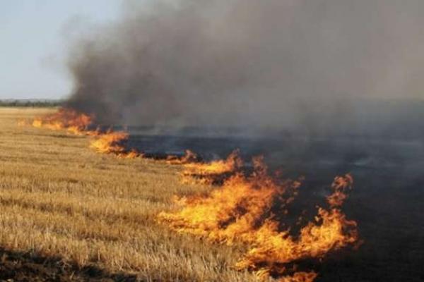 Вогнеборці наголошують буковинцям про сувору заборону спалювання сухої трави