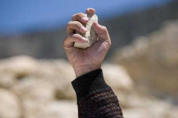 Буковинка побила каменем свою сусідку