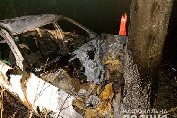 На Буковині під час пожежі авто згоріла людина