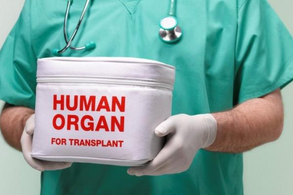 Новий закон про трансплантацію органів в Україні почне діяти вже з січня наступного року