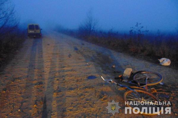 На Буковині водій збив лежачого на дорозі велосипедиста. Потерпілий в лікарні