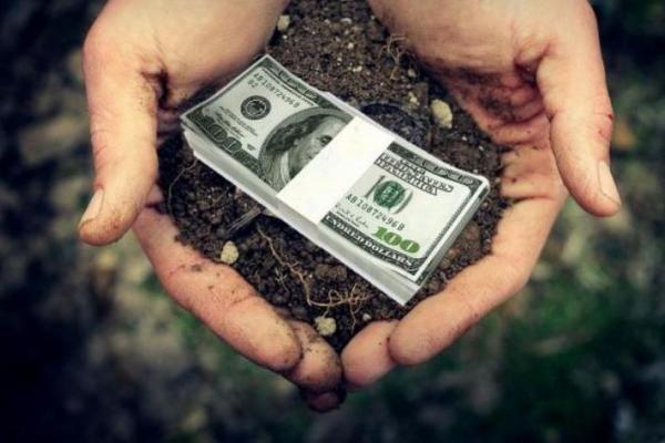 Назвали середню стартову ціну на землю у Чернівецькій області