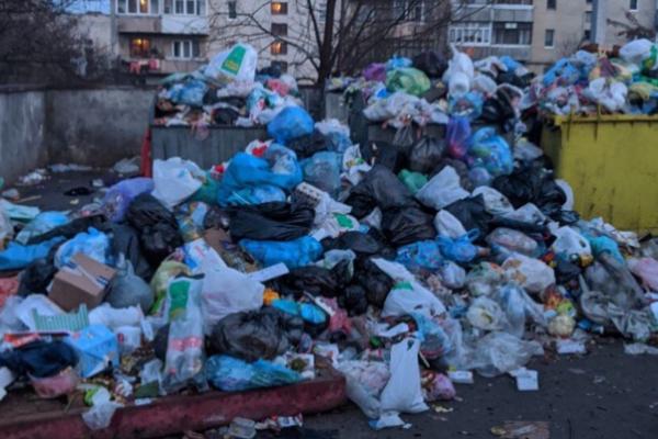 Чернівці перед Різдвяними святами потопають у смітті (фото)