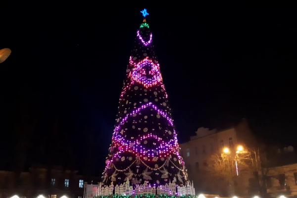 Чернівецька ялинка лідирує у конкурсі серед найкращих новорічних дерев України