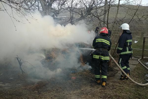 Через сильний вітер на Буковині виникло 6 пожеж