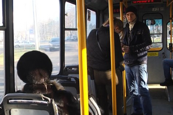 Тариф на проїзд у громадському транспорті Чернівців підвищився