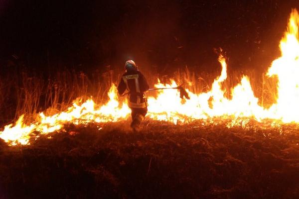 45 пожеж впродовж вихідних - настанням весни на Буковині не перестають палити траву