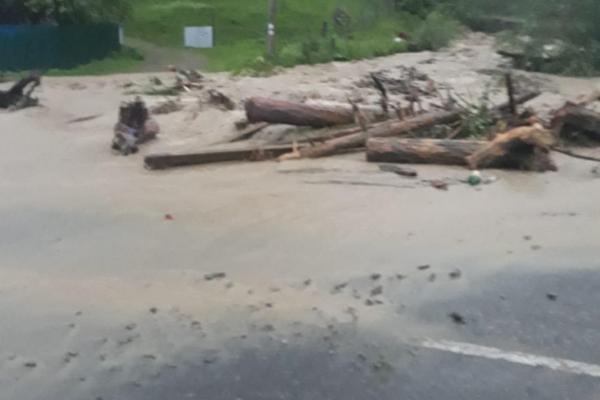 Затоплені обійстя, розмиті дороги та загроза прориву дамби: Чернівецька область постраждала від негоди (відео, фото)