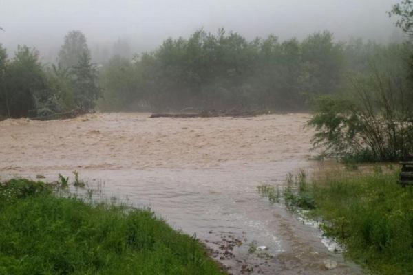 Паводки на Буковині наробили лиха: затоплено городи та вулиці (фото)
