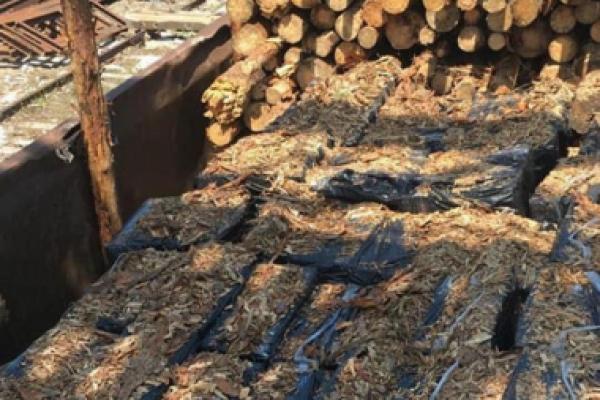 На Буковині у вагонах з лісоматеріалом відшукали цигарки