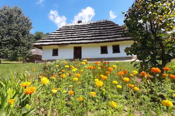 На Буковині визначили найкращі село та громаду