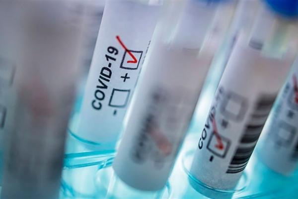 На Буковині зафіксували 209 нових випадків зараження