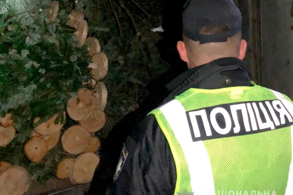 На Буковині поліцейські викрили жителя Хмельниччини, який перевозив ялинки «в законі»
